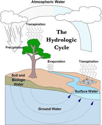 The hydrologic cycle water at the surface wetlands lakes rivers oceans evaporates into the atmosphere leaving impurities behind moisture moves around the globe with the ccuart Gallery
